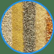 Medición de Niveles en Silos y Tanques de Cereales
