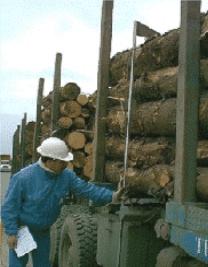 Medir Volumen de carga en camiones